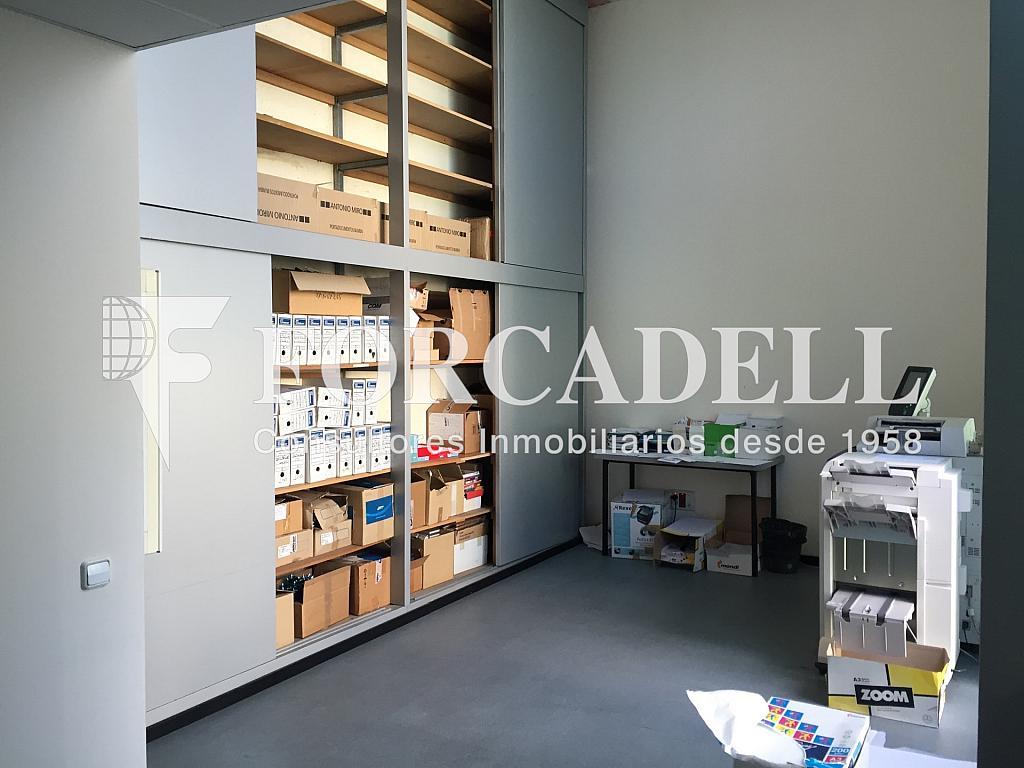 IMG_4062 - Nave industrial en alquiler en calle Ciències, Gran Via LH en Hospitalet de Llobregat, L´ - 313351391