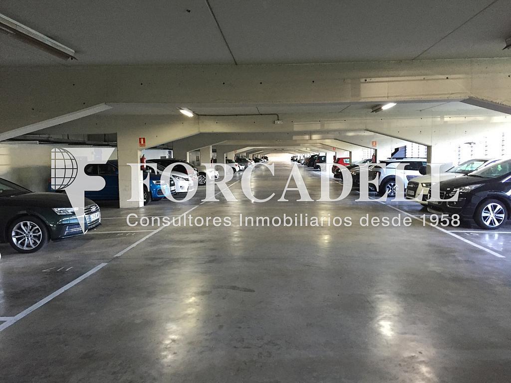 IMG_4052 - Nave industrial en alquiler en calle Ciències, Gran Via LH en Hospitalet de Llobregat, L´ - 313351400