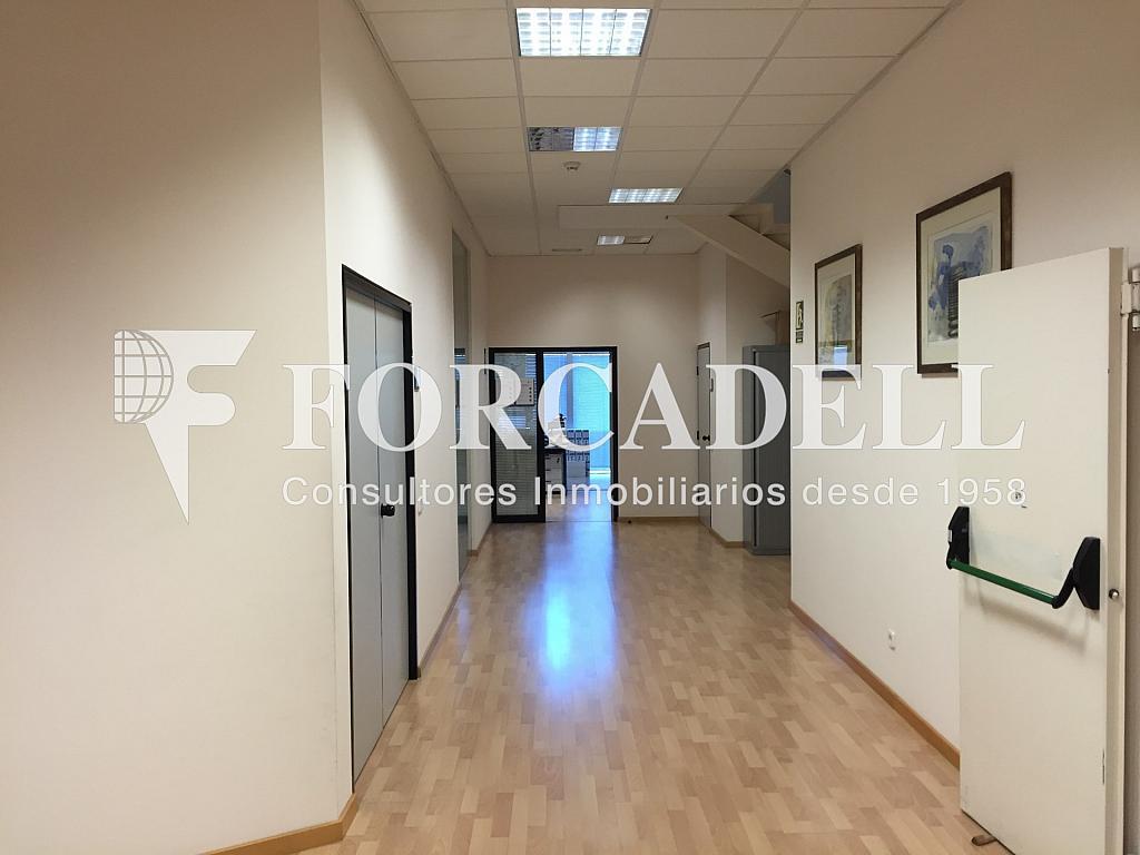 IMG_4049 - Nave industrial en alquiler en calle Ciències, Gran Via LH en Hospitalet de Llobregat, L´ - 313351403