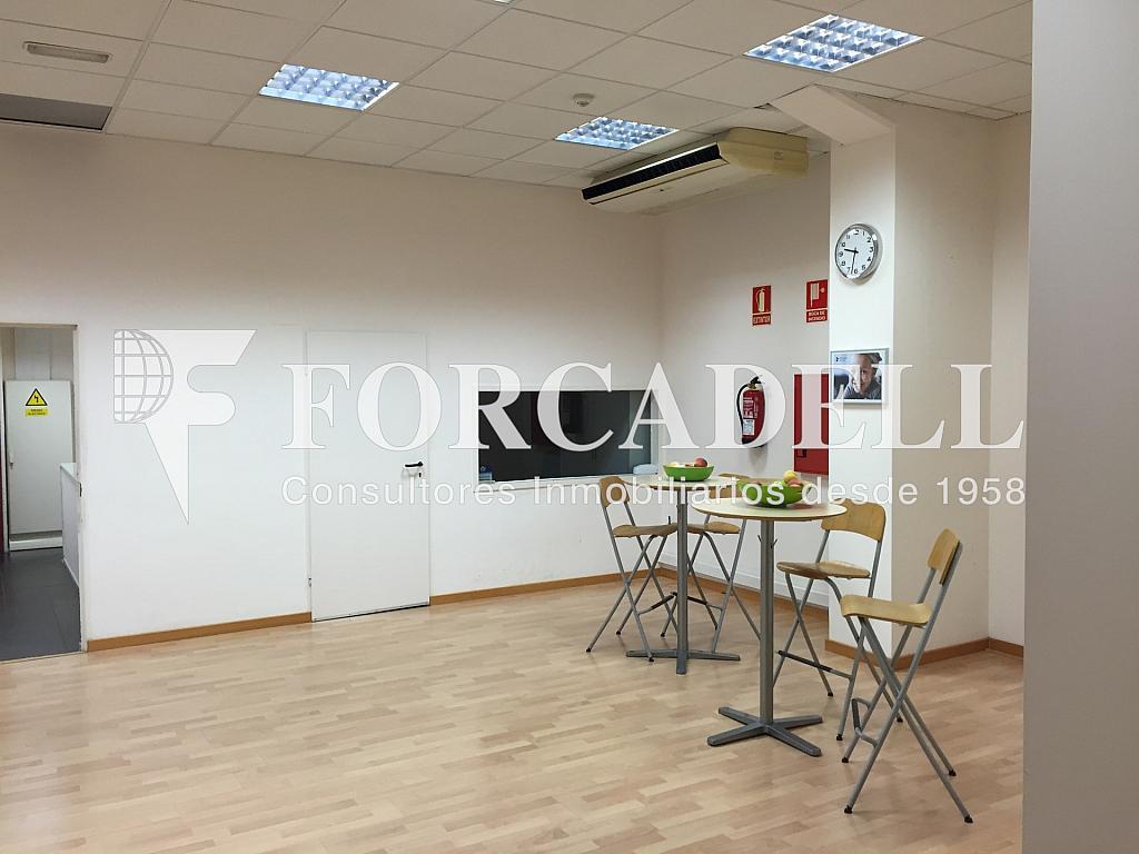 IMG_4048 - Nave industrial en alquiler en calle Ciències, Gran Via LH en Hospitalet de Llobregat, L´ - 313351427