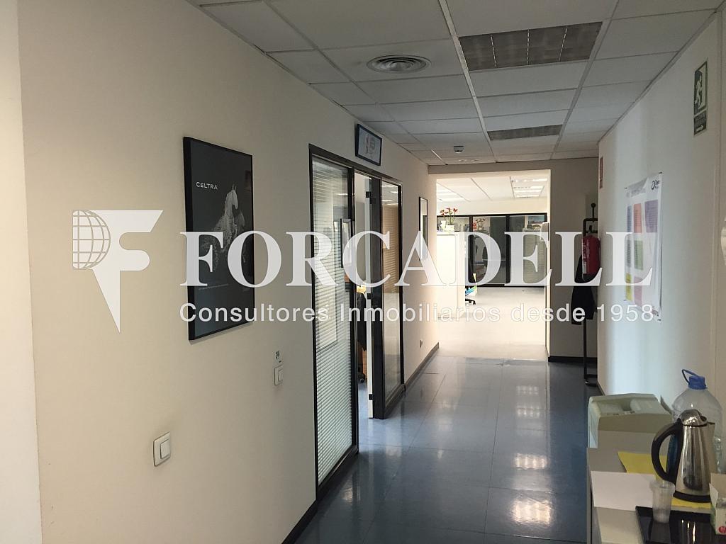 IMG_3708 - Nave industrial en alquiler en calle Ciències, Gran Via LH en Hospitalet de Llobregat, L´ - 313351433