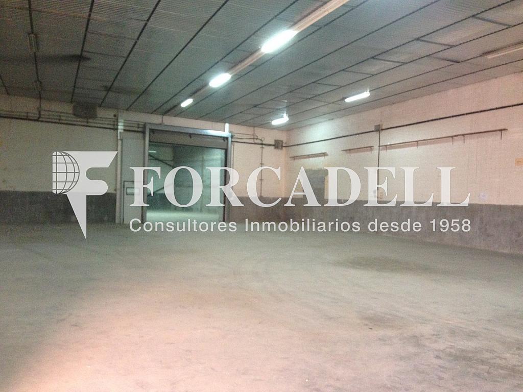 IMG_0397 - Nave industrial en alquiler en calle Del Mig, Bellvitge en Hospitalet de Llobregat, L´ - 319083569
