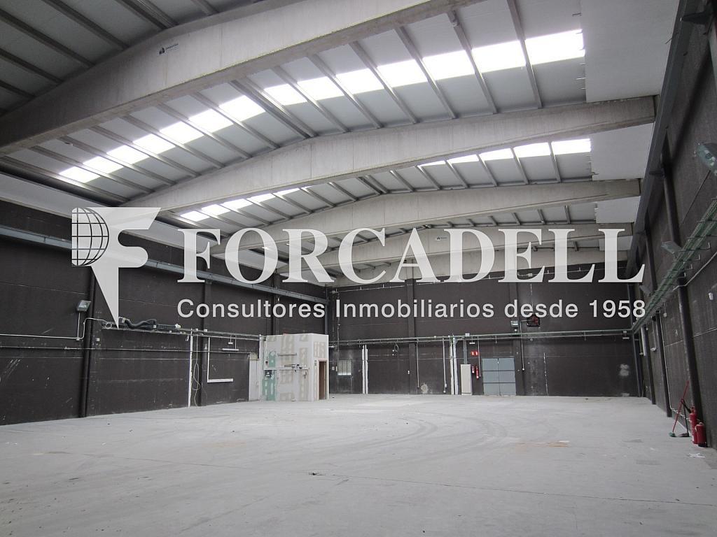 Como quedaria la cubierta - Nave industrial en alquiler en calle Maresme, Cornellà de Llobregat - 319083668