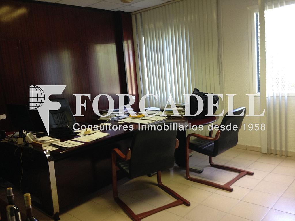 IMG_2889 - Nave industrial en alquiler en calle Can Roqueta, Sabadell - 319083767
