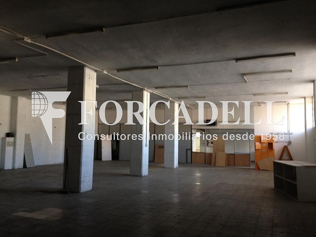 IMG_2170 - Nave industrial en alquiler en calle Crom, Bellvitge en Hospitalet de Llobregat, L´ - 319083785