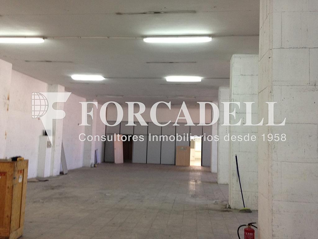 IMG_2171 - Nave industrial en alquiler en calle Crom, Bellvitge en Hospitalet de Llobregat, L´ - 319083788