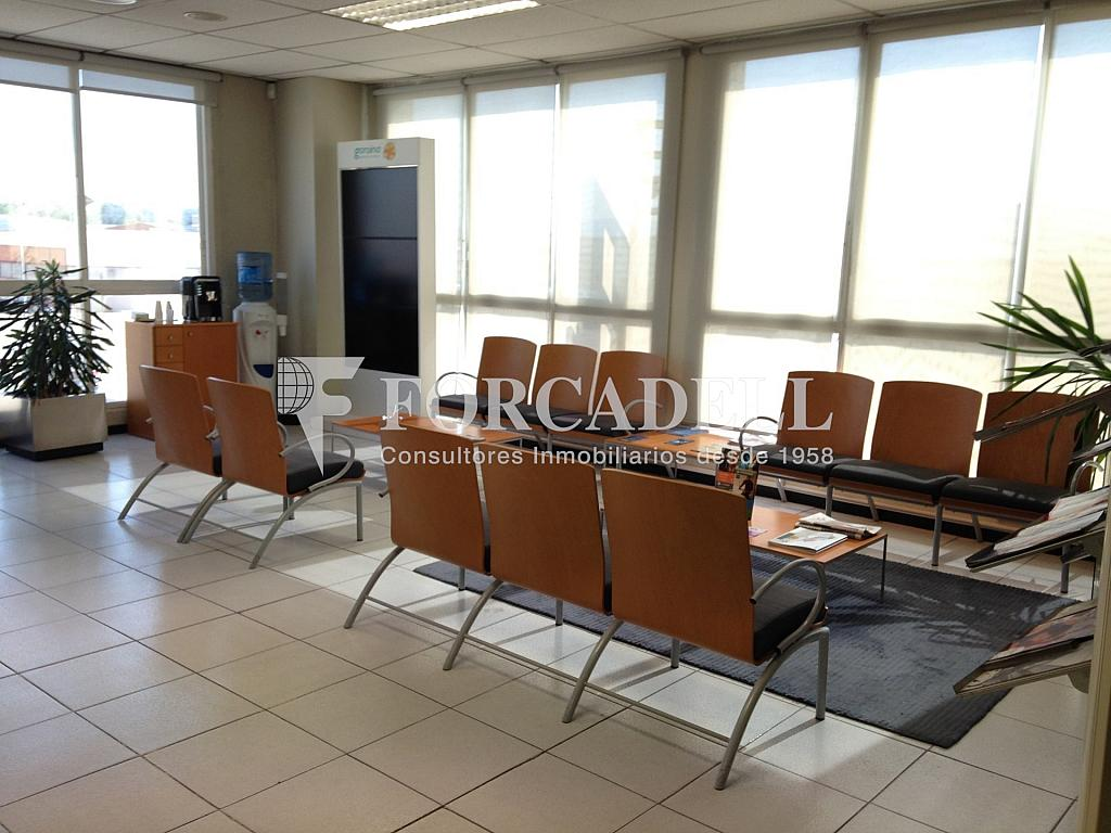 IMG_2444 - Nave en alquiler en calle Pica Destats, Sant Fruitós de Bages - 328222603