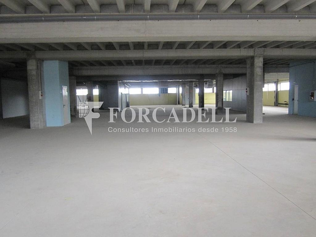 20-10-2011 056 - Edificio en alquiler en calle Verneda, Bon Pastor en Barcelona - 266472339