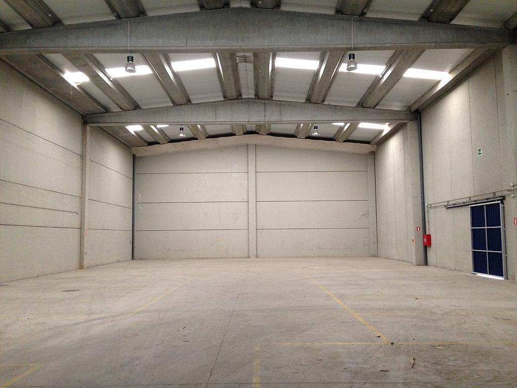 IMG_0981 - Nave industrial en alquiler en calle Montserrat Roig, Centre en Hospitalet de Llobregat, L´ - 266470062