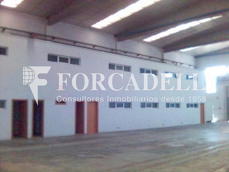 Esp3 - Nave industrial en alquiler en calle Gressol, Esparreguera - 266474883