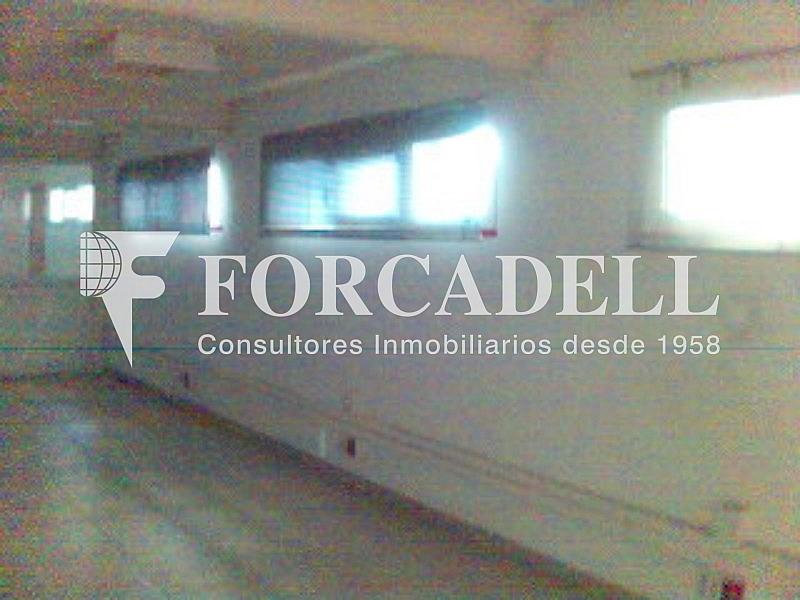 Esp16 - Nave industrial en alquiler en calle Gressol, Esparreguera - 266474889