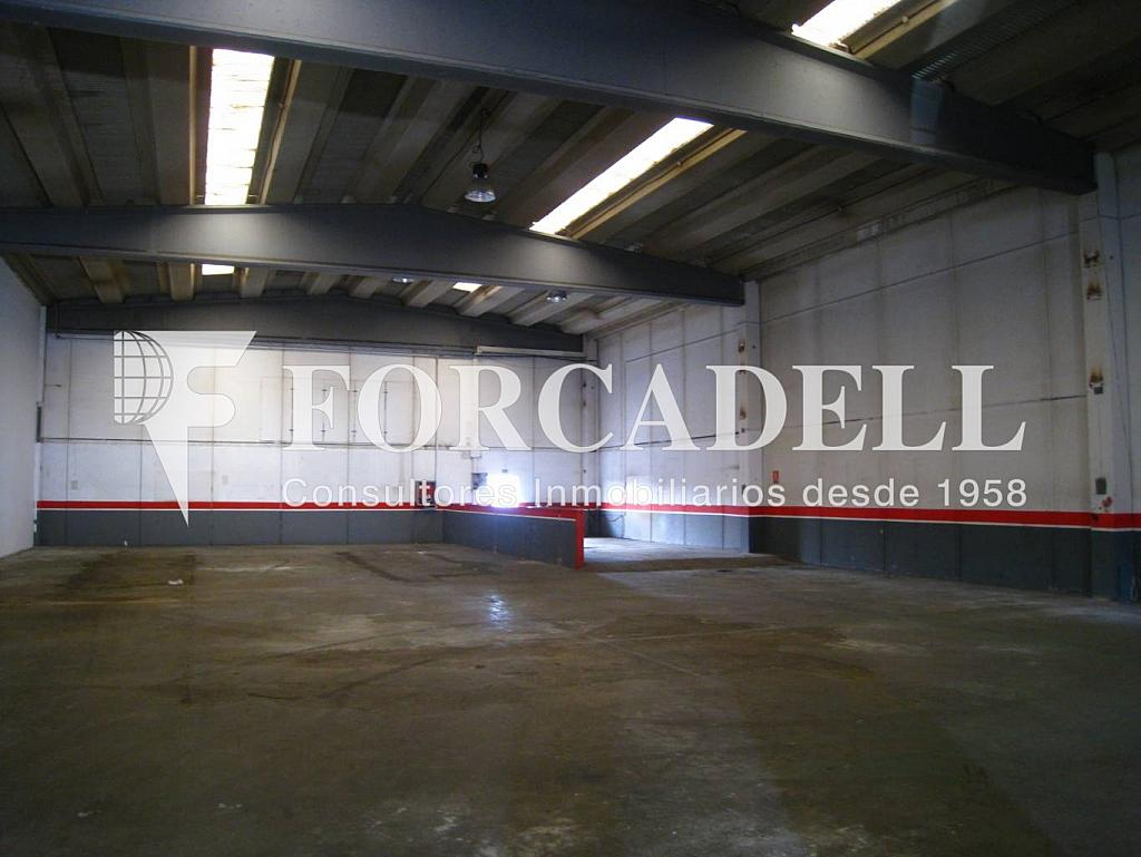19-10-2011 035 - Nave industrial en alquiler en calle Riera Can Pahisa, Molins de Rei - 266468208