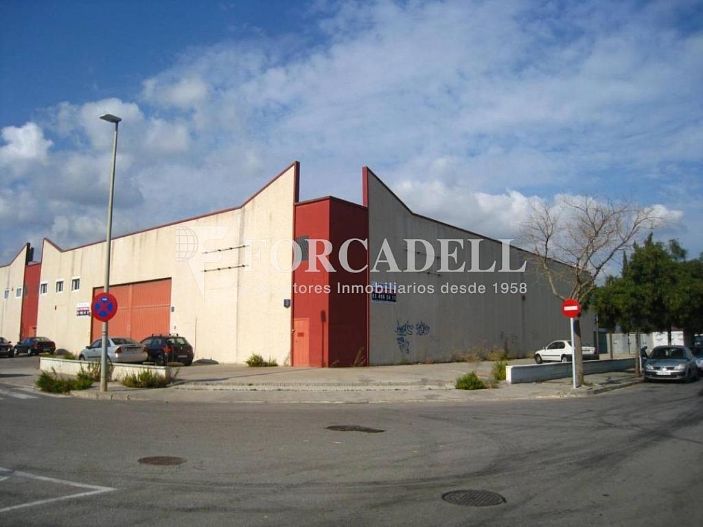19-10-2011 002 - Nave industrial en alquiler en calle Riera Can Pahisa, Molins de Rei - 266473536