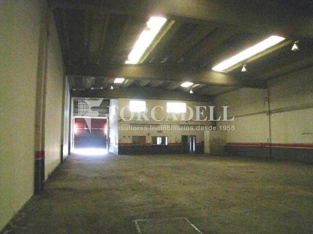 19-10-2011 022 - Nave industrial en alquiler en calle Riera Can Pahisa, Molins de Rei - 266473563