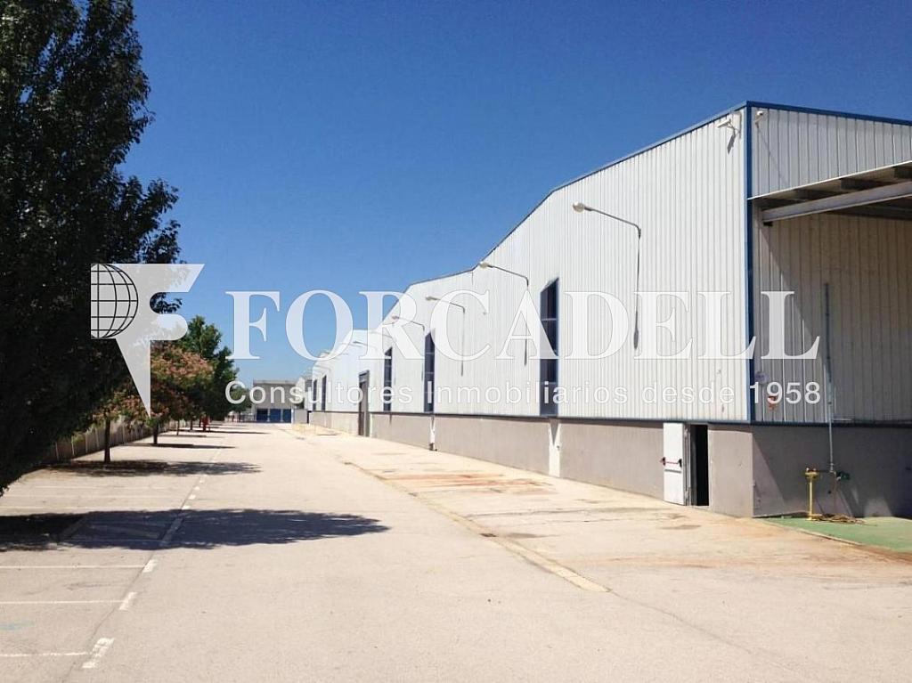 IMG_3488 - Nave en alquiler en calle De la Forja, Arboç, l´ - 266473215