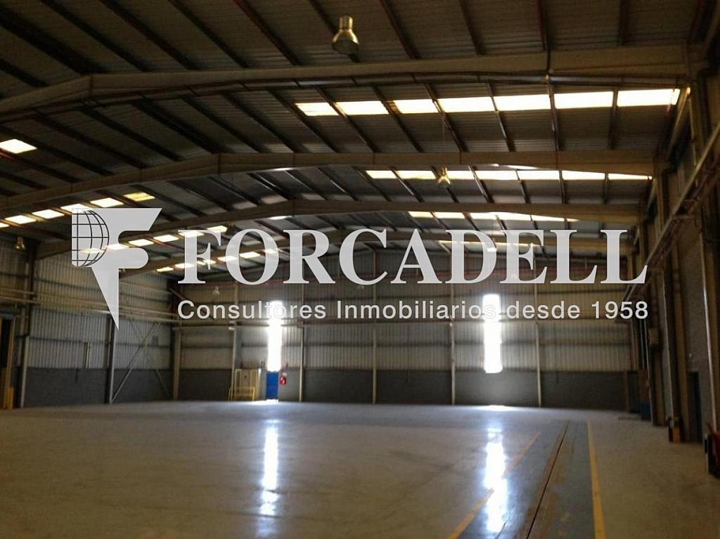 IMG_3481 - Nave en alquiler en calle De la Forja, Arboç, l´ - 266473218