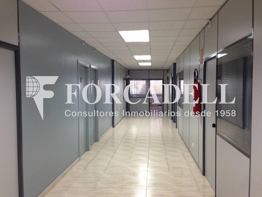 IMG_3478 - Nave en alquiler en calle De la Forja, Arboç, l´ - 266473230