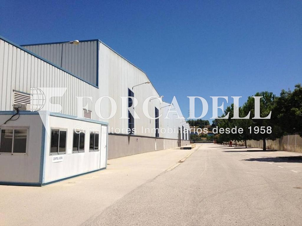 IMG_3491 - Nave en alquiler en calle De la Forja, Arboç, l´ - 266473233