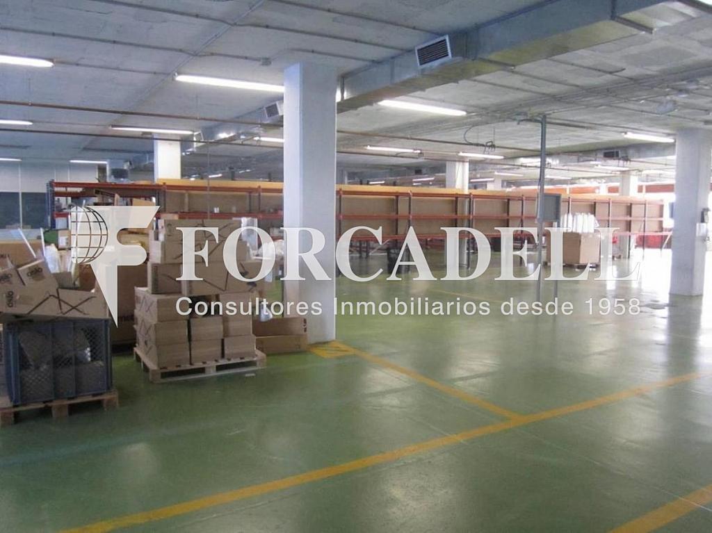 03-02-2012 008 - Nave industrial en alquiler en calle Tambor del Bruc, Sant Joan Despí - 267285672