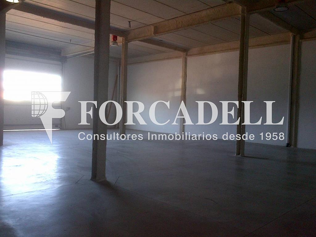 Molins de Rei-20130412-00908 - Nave industrial en alquiler en calle Francesc Layret, Molins de Rei - 266466108