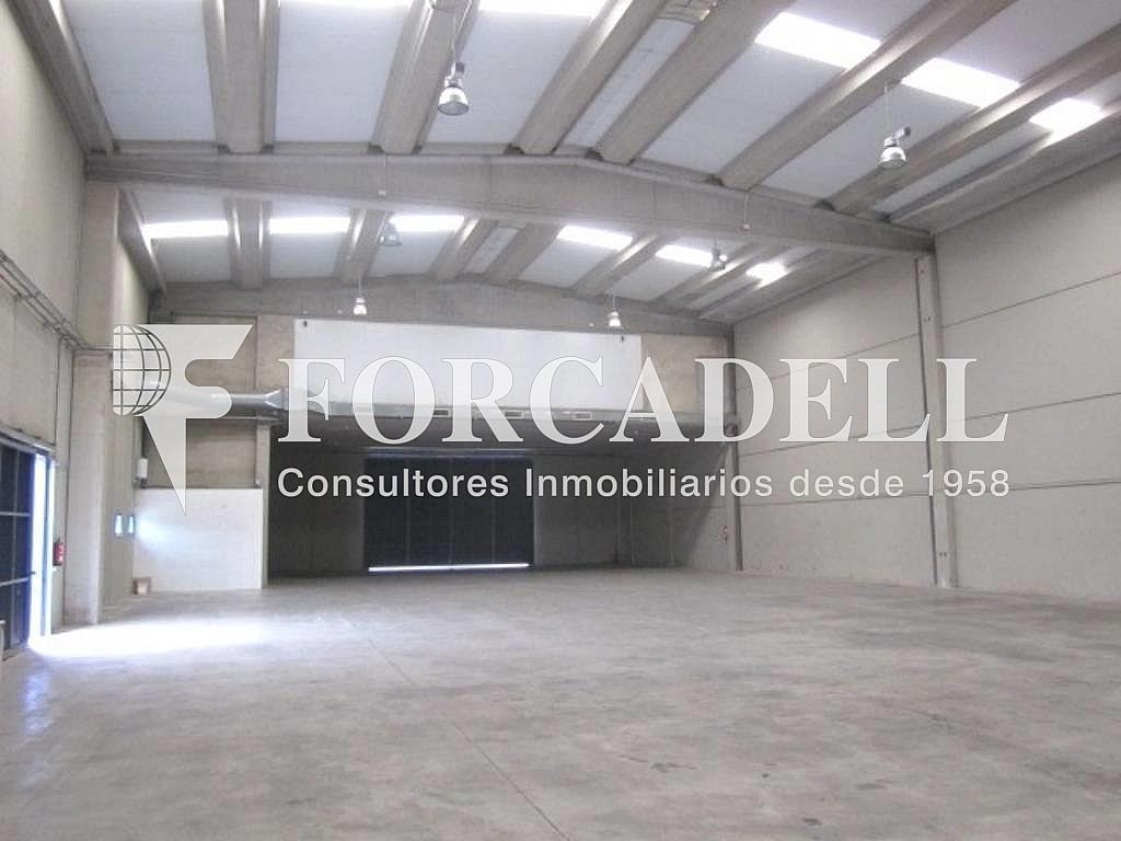 IMG_2606 - Nave industrial en alquiler en calle Jose Agustin Goytosolo, Centre en Hospitalet de Llobregat, L´ - 266472168