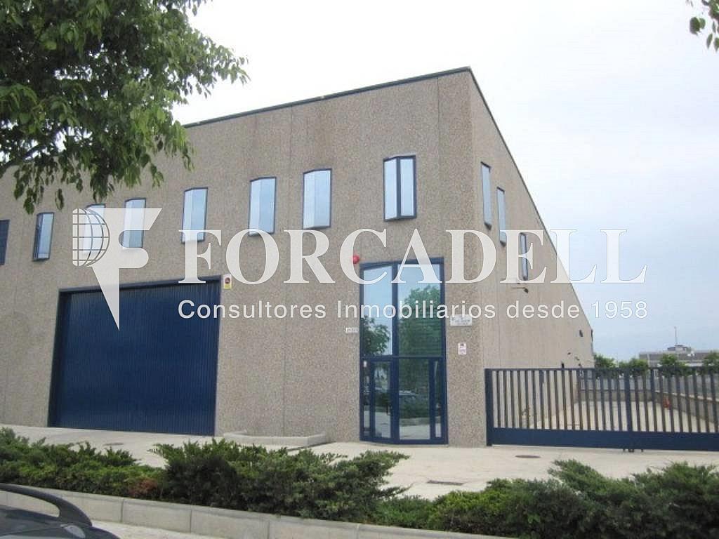 IMG_2611 - Nave industrial en alquiler en calle Jose Agustin Goytosolo, Centre en Hospitalet de Llobregat, L´ - 266472183