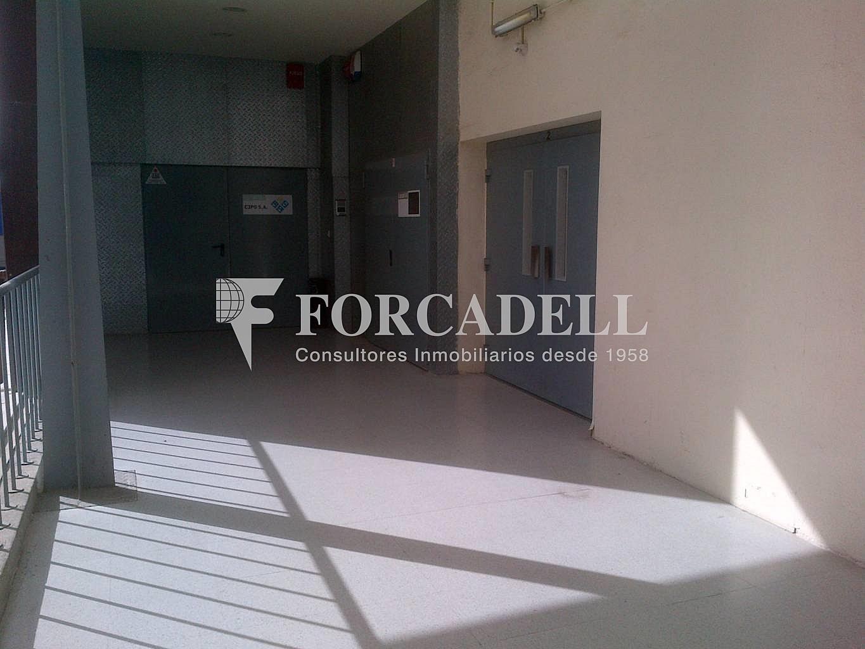 IMG-20121109-00080 - Nave industrial en alquiler en calle Isaac Peral, Sant Just Desvern - 266465397