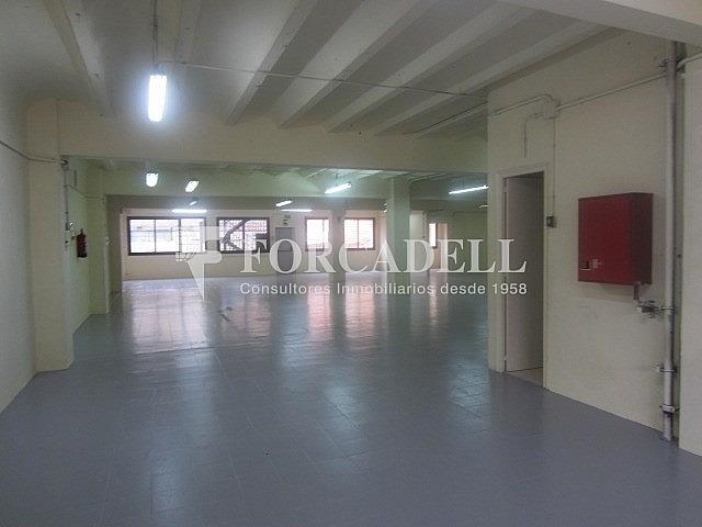 IMG_3169 - Nave industrial en alquiler en calle Corominas, La Torrassa en Hospitalet de Llobregat, L´ - 266464779