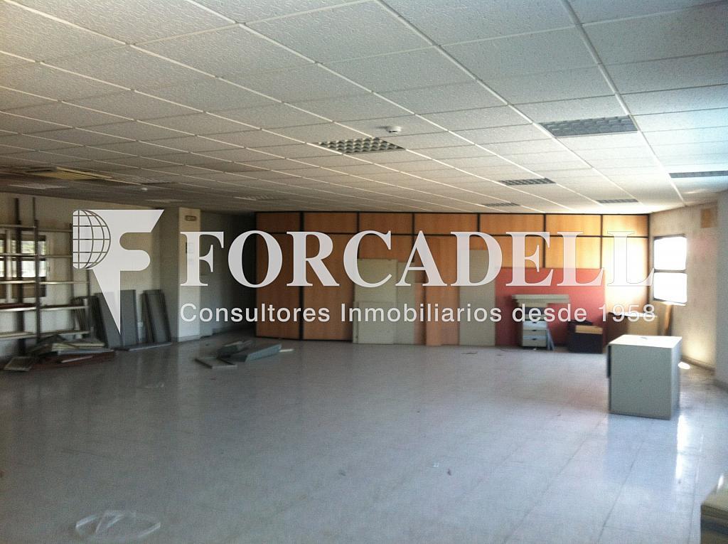 IMG_7680 - Nave en alquiler en calle Antonio Machado, Montornès del Vallès - 266475648
