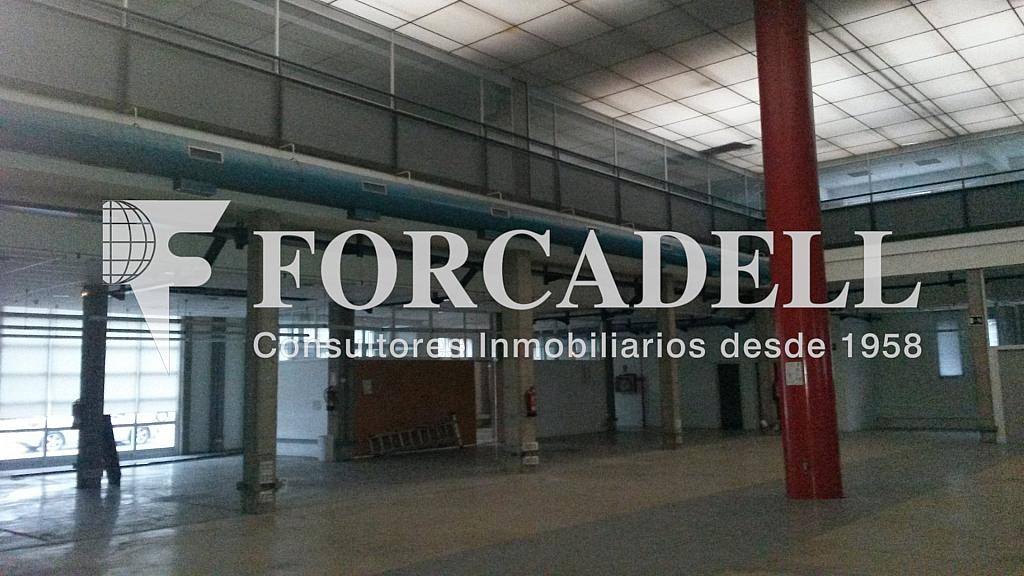 20141126_112634 - Nave industrial en alquiler en calle Santander, El Raval en Barcelona - 266473242
