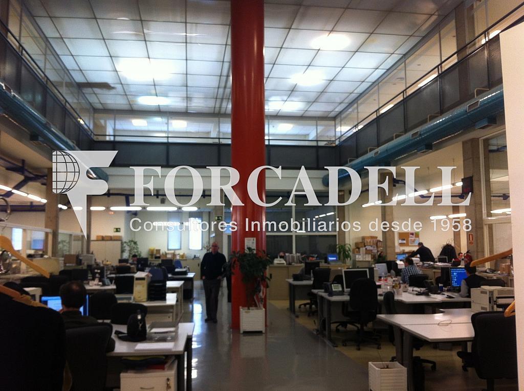 IMG_5394 - Nave industrial en alquiler en calle Santander, El Raval en Barcelona - 266473254