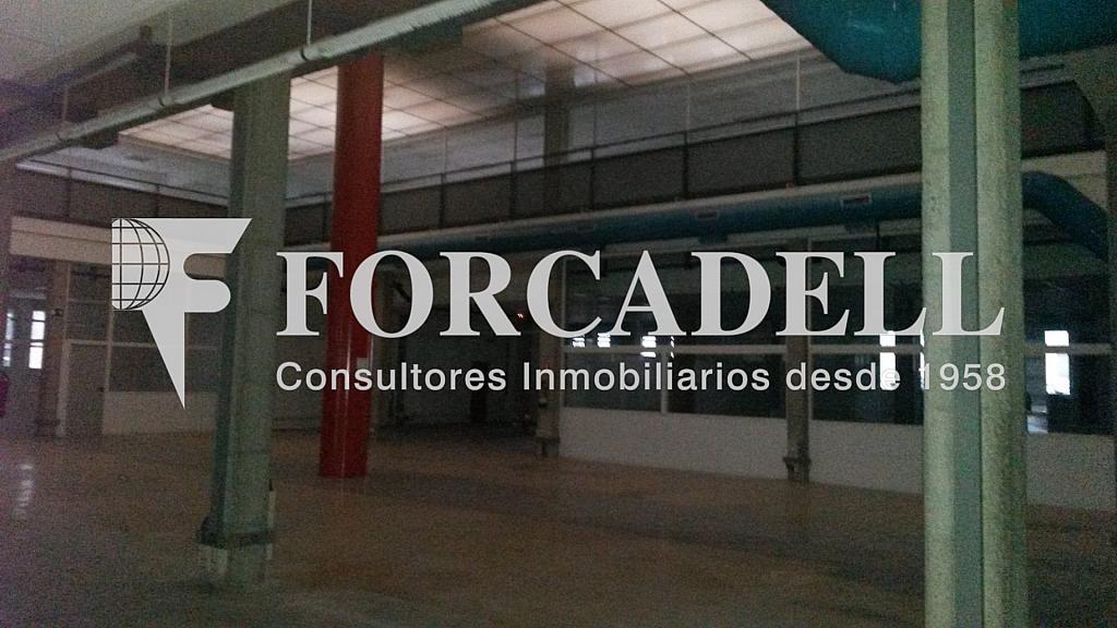 20141126_112943 - Nave industrial en alquiler en calle Santander, El Raval en Barcelona - 266473260