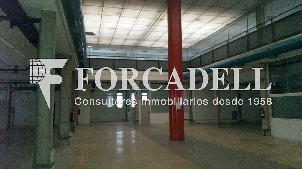 20141126_112559 - Nave industrial en alquiler en calle Santander, El Raval en Barcelona - 266473263