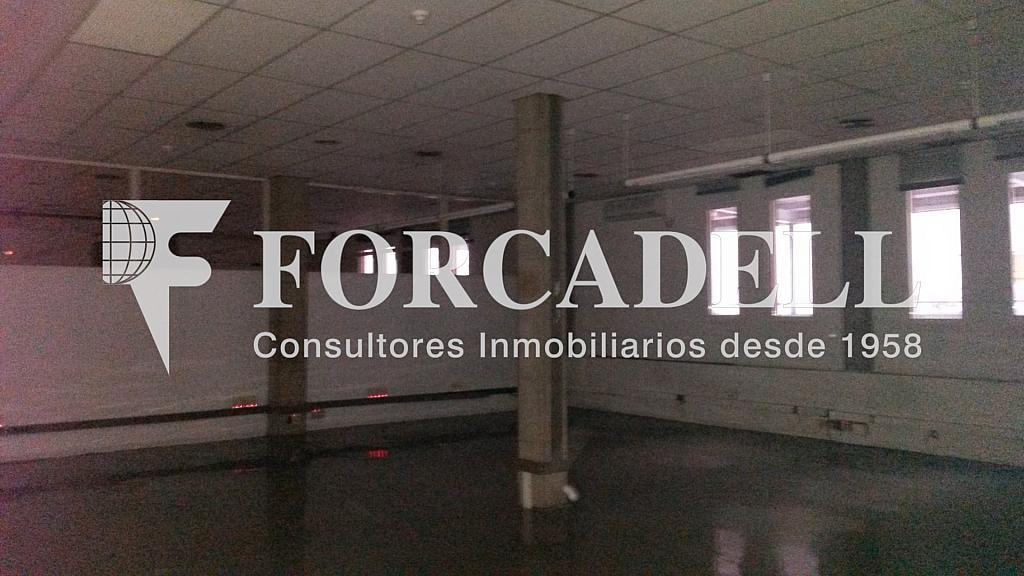 20141126_112645 - Nave industrial en alquiler en calle Santander, El Raval en Barcelona - 266473266