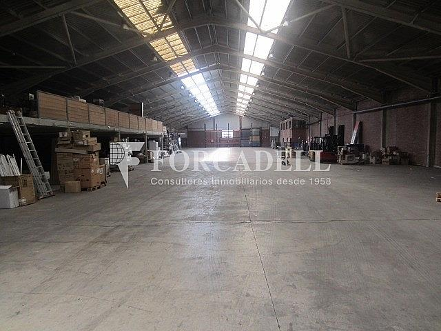 IMG_3611 - Nave industrial en alquiler en calle Llobatona, Viladecans - 266476500