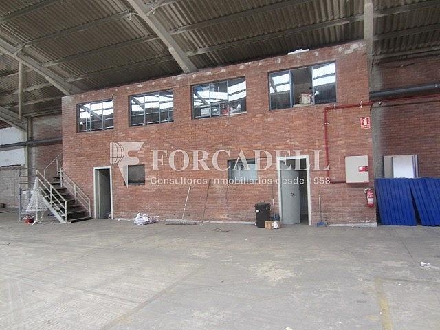 IMG_3614 - Nave industrial en alquiler en calle Llobatona, Viladecans - 266476506