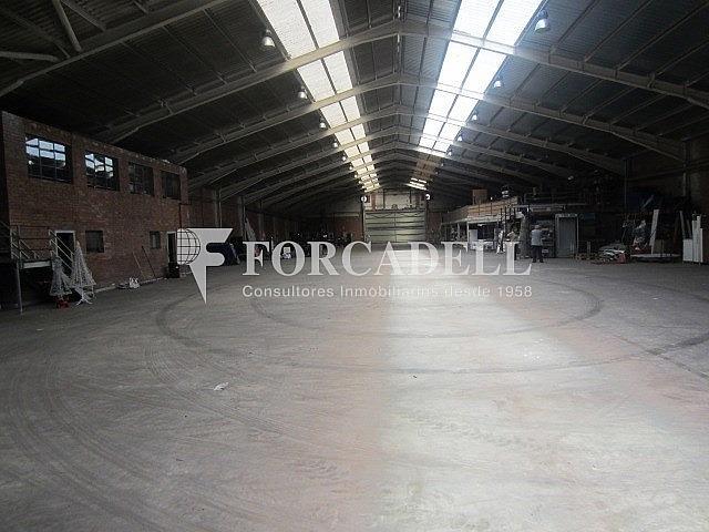 IMG_3619 - Nave industrial en alquiler en calle Llobatona, Viladecans - 266476509