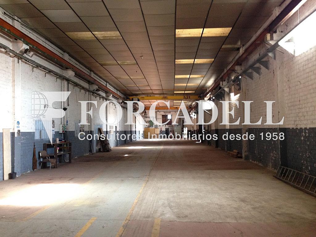 IMG_5213 - Nave industrial en alquiler en calle , Castellgalí - 266474514