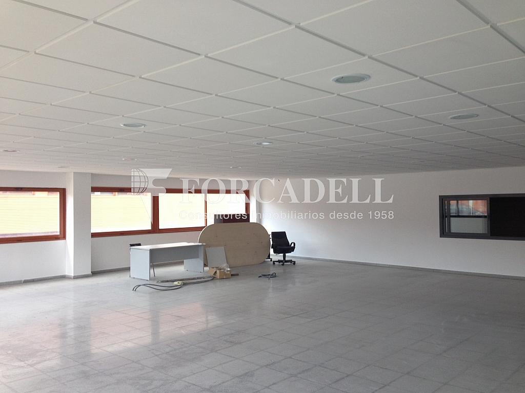 IMG_5694 - Nave industrial en alquiler en calle Santiago Rusiñol, Polinyà - 313351499