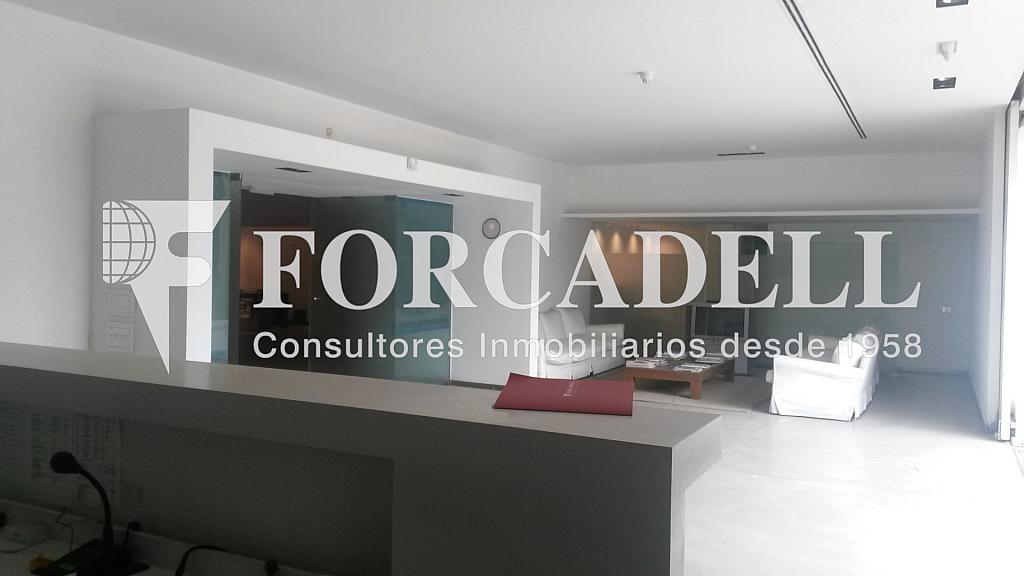 20140626_125510 - Nave industrial en alquiler en calle Mare de Deu de Montserrat, Sant Joan Despí - 266471619
