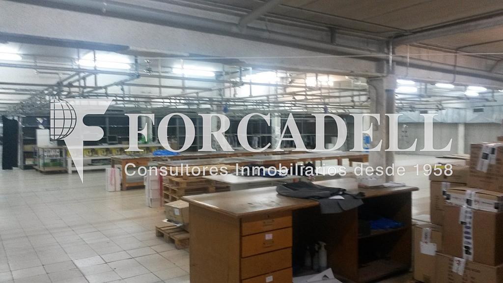 20140626_130354 - Nave industrial en alquiler en calle Mare de Deu de Montserrat, Sant Joan Despí - 266471640