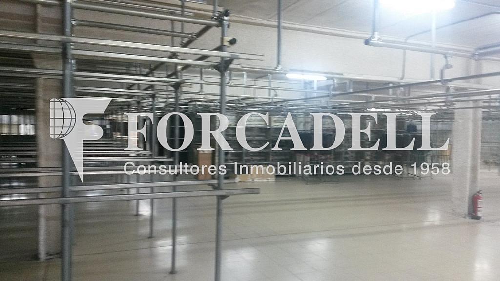 20140626_130616 - Nave industrial en alquiler en calle Mare de Deu de Montserrat, Sant Joan Despí - 266471643