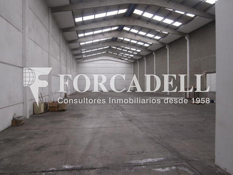 Foto 005 - Nave industrial en alquiler en calle Can Sellarés, Sant Andreu de la Barca - 266476107