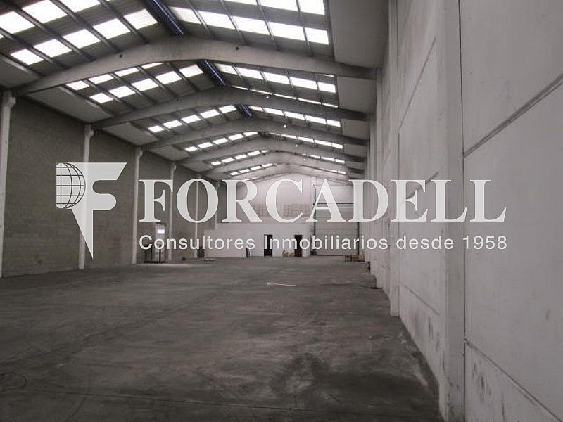 Foto 008 - Nave industrial en alquiler en calle Can Sellarés, Sant Andreu de la Barca - 266476110