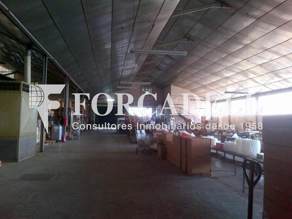 Molins de Rei-20130412-00931 - Nave industrial en alquiler en calle Electricitat, Castellbisbal - 266474658