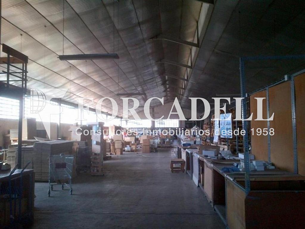 Sant Cugat del Vallès-20130412-00929 - Nave industrial en alquiler en calle Electricitat, Castellbisbal - 266474664