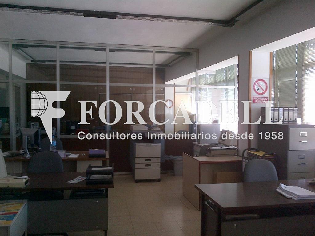 El Papiol-20130412-00935 - Nave industrial en alquiler en calle Electricitat, Castellbisbal - 266474670