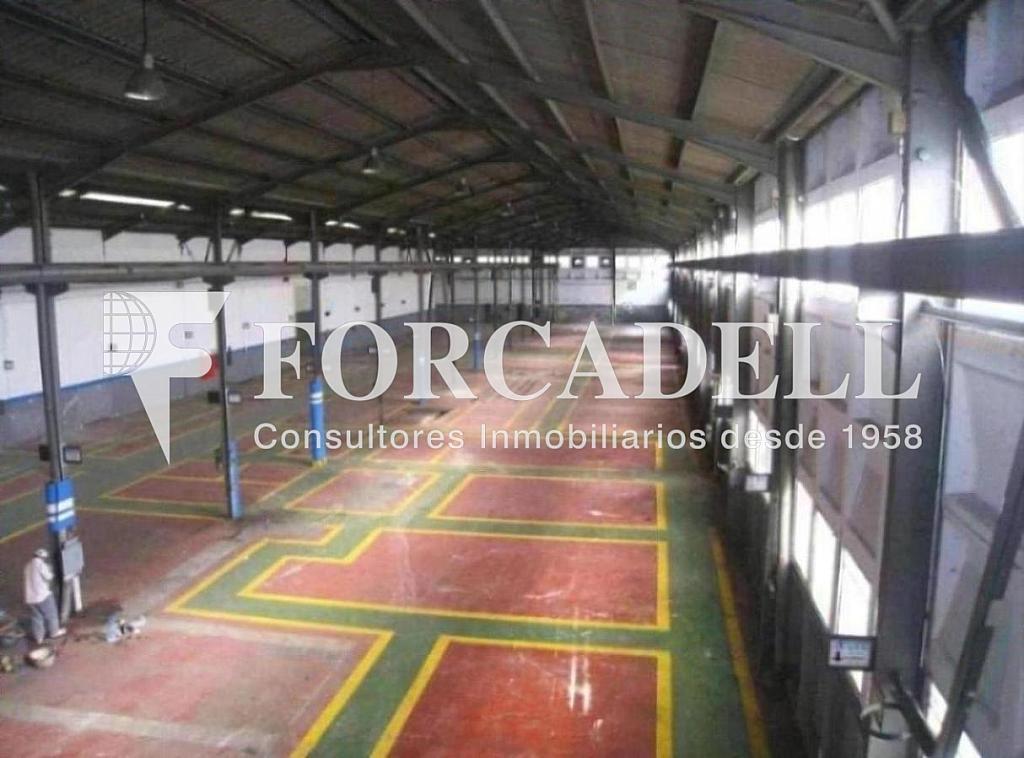 Foto 006 - Nave industrial en alquiler en calle Nii, Esparreguera - 266472033
