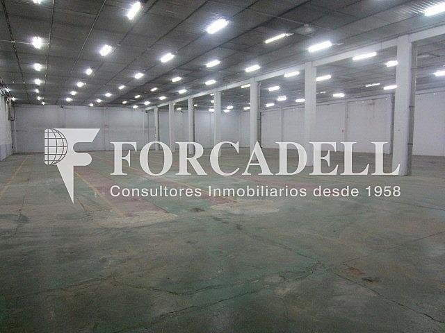 IMG_3969 - Nave industrial en alquiler en calle Costa i Deu, Sabadell - 266469882