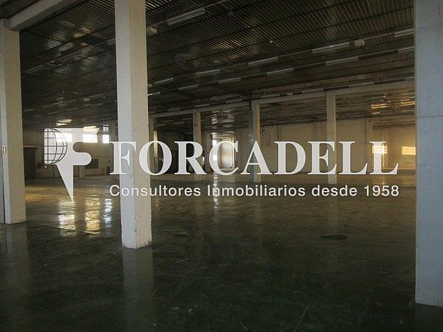 IMG_3977 - Nave industrial en alquiler en calle Costa i Deu, Sabadell - 266469891